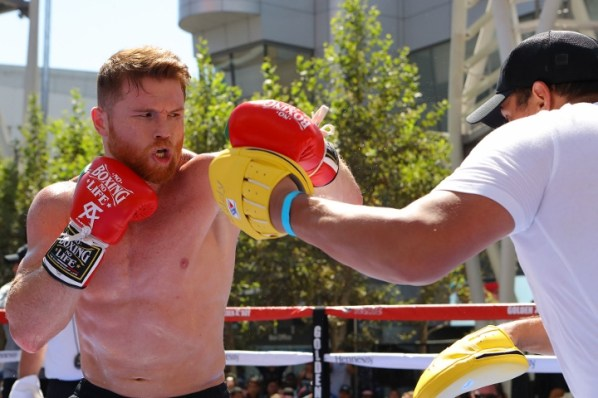 https://i1.wp.com/photo.boxingscene.com/uploads/canelo-alvarez%20(5)_10.jpg?w=598&ssl=1