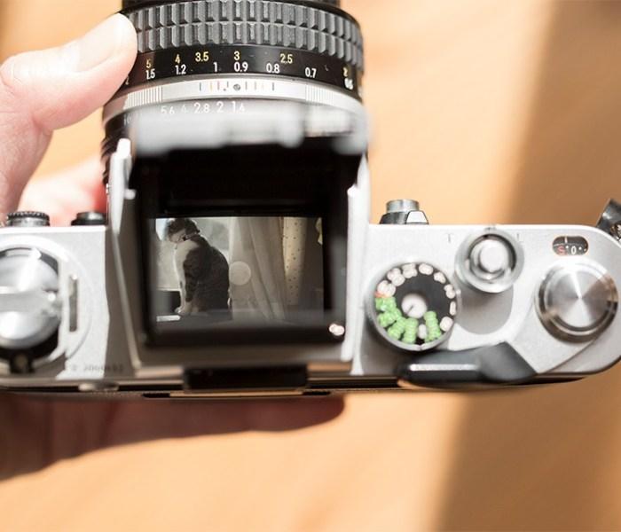 フィルム一眼レフカメラを楽しむ講座