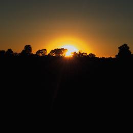 Sunlight_port 032