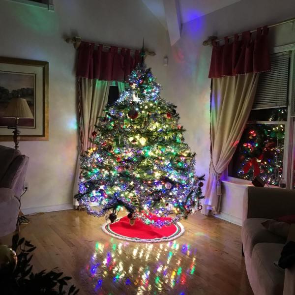 Nice tree ??