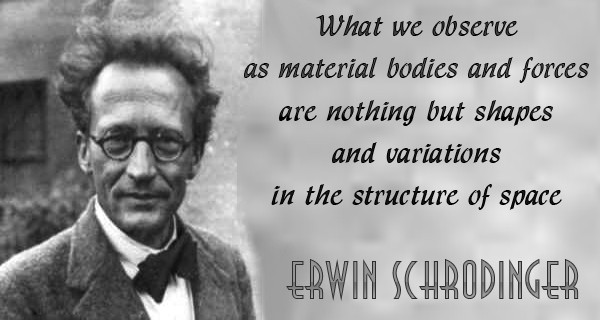 Image result for schrodinger quote