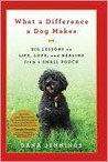 What a Difference a Dog Makes: Big Lessons on Life, Love and Healing from a Small Pooch