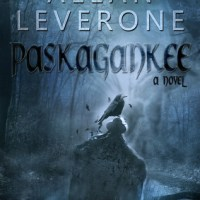 PIC Tour Review: Paskagankee by Allan Leverone