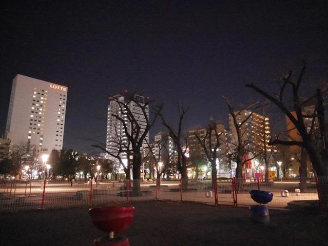 錦糸公園夜景