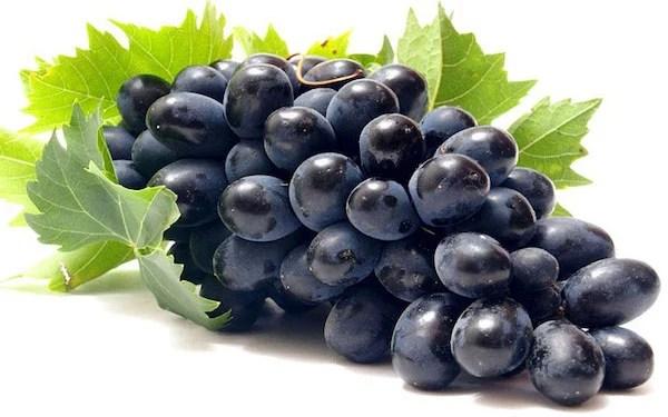 Kaya Antioksidan Anggur Hitam Cegah Kanker Dan Diabetes Jpnn Com