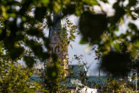 Rathaus, da hinten