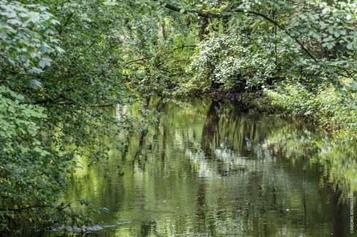Flussläufchen