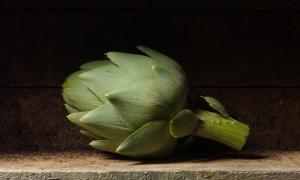 Still Life: Artichoke