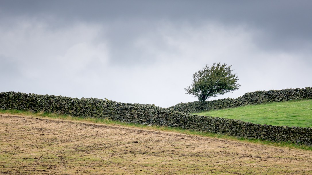 Cumbrian Scenery I