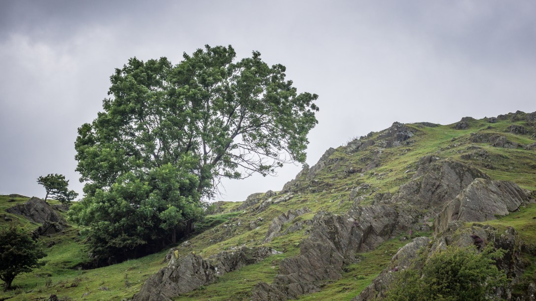 Cumbrian Scenery VI