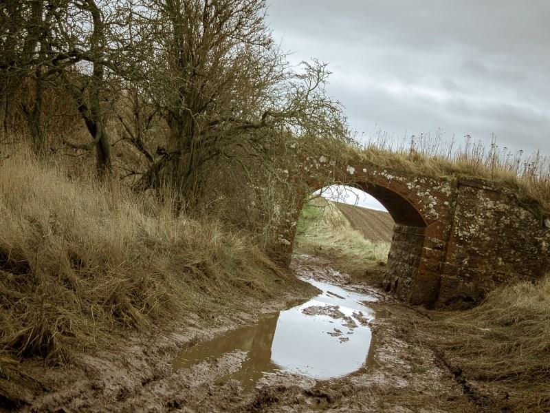 Mud under the Bridge