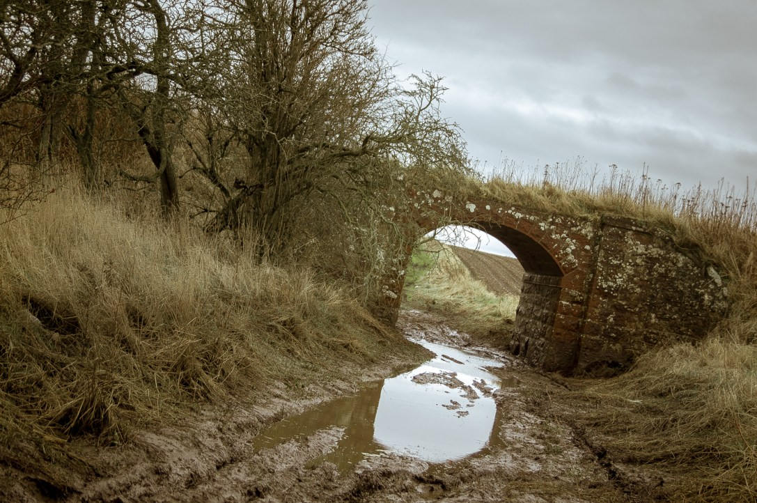 Mud under the Bridge