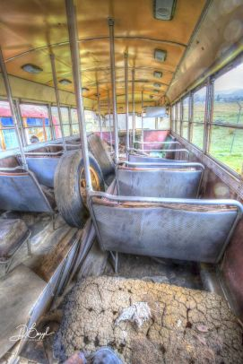 Duane Bazzel - Back of the Bus