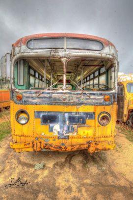 Duane Bazzel - Mass Transit