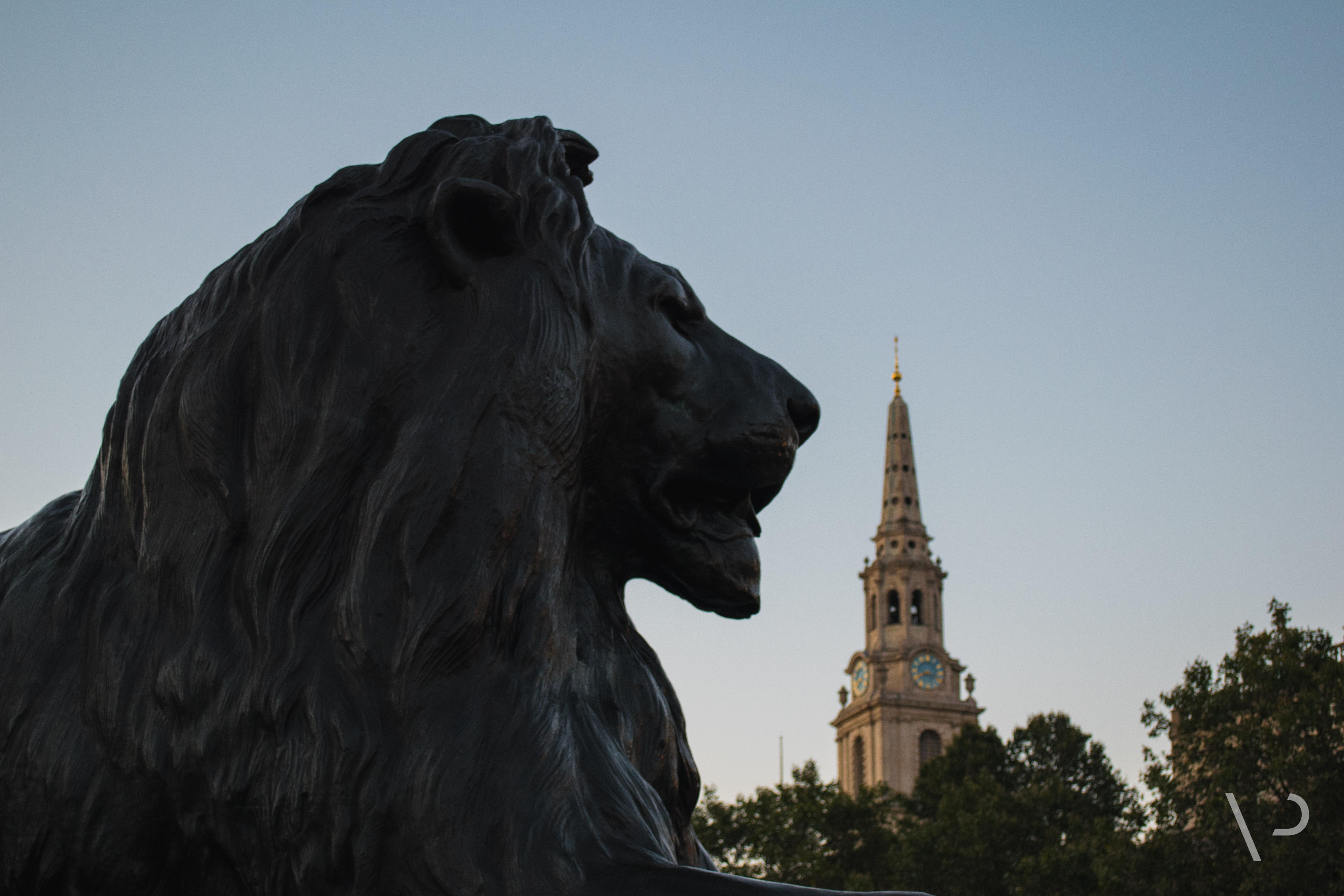 Lion de Trafalgar Square