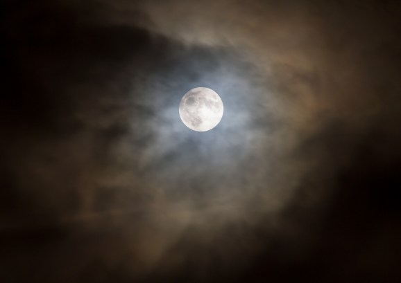 November Moon 1