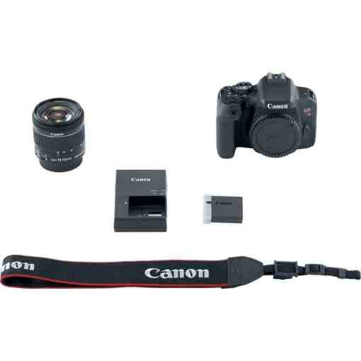 Canon EOS Rebel T7i DSLR Camera with 18 55mm Lens 13 - Canon EOS Rebel T7i Digital SLR Camera with 18-55mm Lens