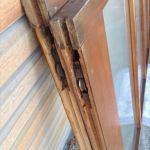 縞模様のガラス戸4