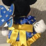20周年ミニーマウス2