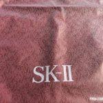 SK2ビニール袋1