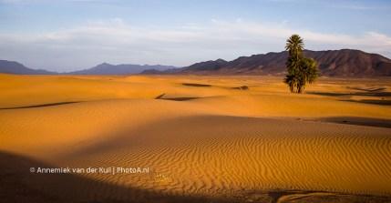 wpid-PhotoA.nl_Morocco_32.jpg
