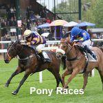 fak races 31-5-2015. 022