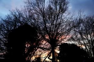 winter-solstice-2015-3