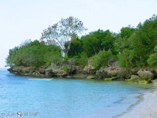 Alona Beach 18