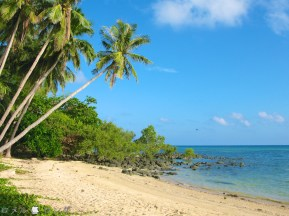 Coco Verde Beach 008