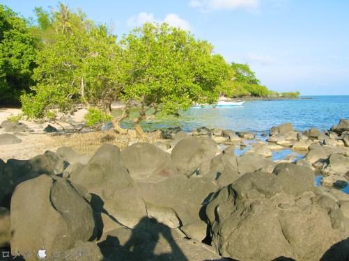 Coco Verde Beach 014