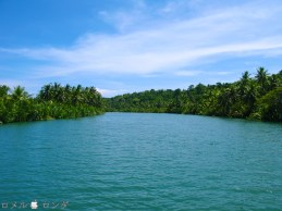Loboc River 15