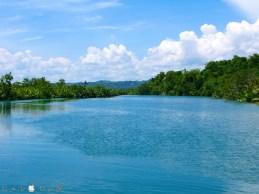 Loboc River 2