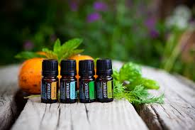 Doterra classes
