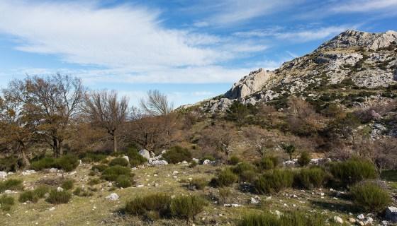 The mountain range at Villanueva de Rosario.