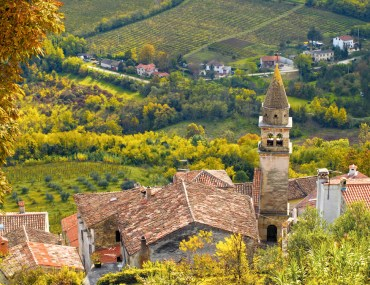 Image from above of tower with tile roof in Motovun, Croatia. Terraced fields in background.
