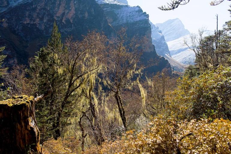 Bhutan-Chomolhari-Trek-Yury-Krylov-6-saadj