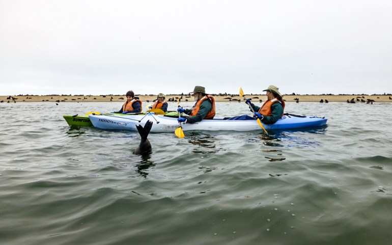 Kayaking-on-Walvis-Bay---Swakopmund-2