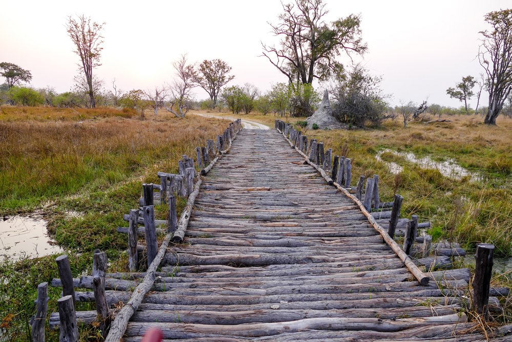 Bridge-&-Stream-Crossings—Xakanaxa-Moremi