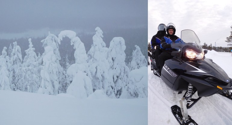 snow-trees-snowmobile