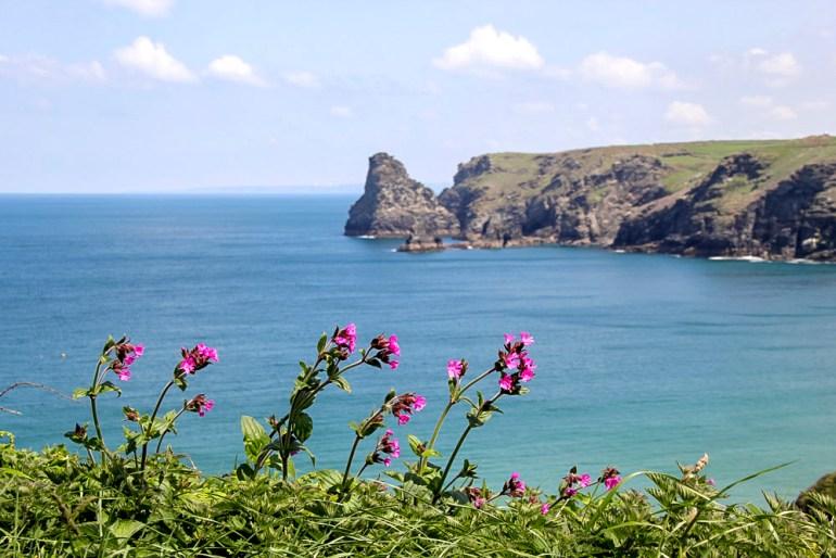 Cornwall-Barbara-Hughey-Pax-OK-IMG_0420-small-CRAdj