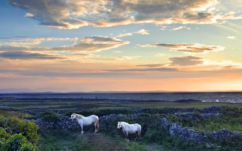 white horses in inishmore ireland