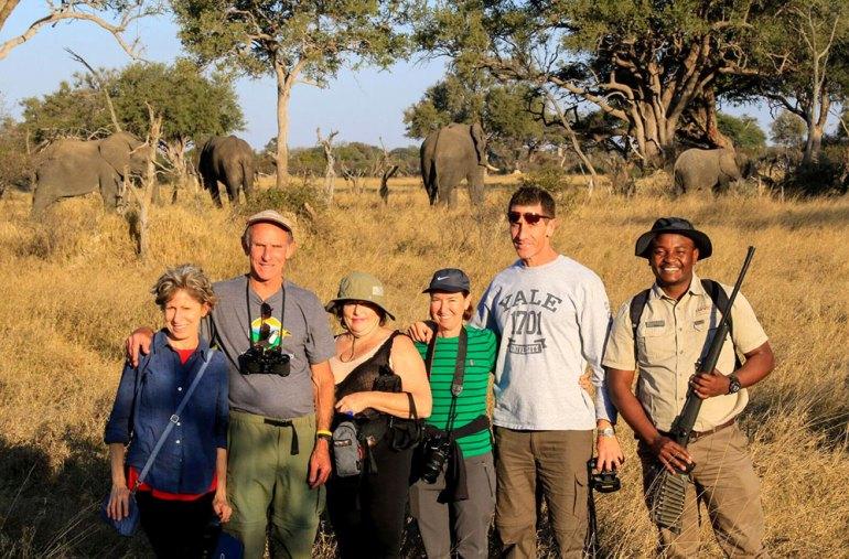 elephant walking safari zimbabwe