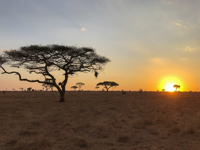 sunset in the serengeti tanzania