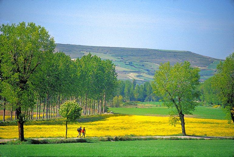Camino de Santiago Spring Spain