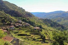Pinhao region of Portugal