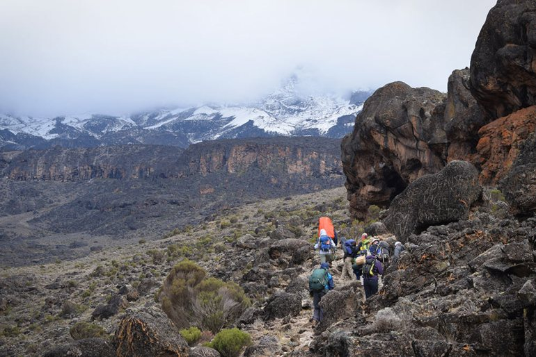 hiking through moorlands in kilimanjaro