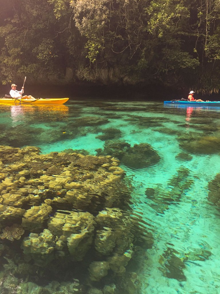 kayakers in bay in Palau