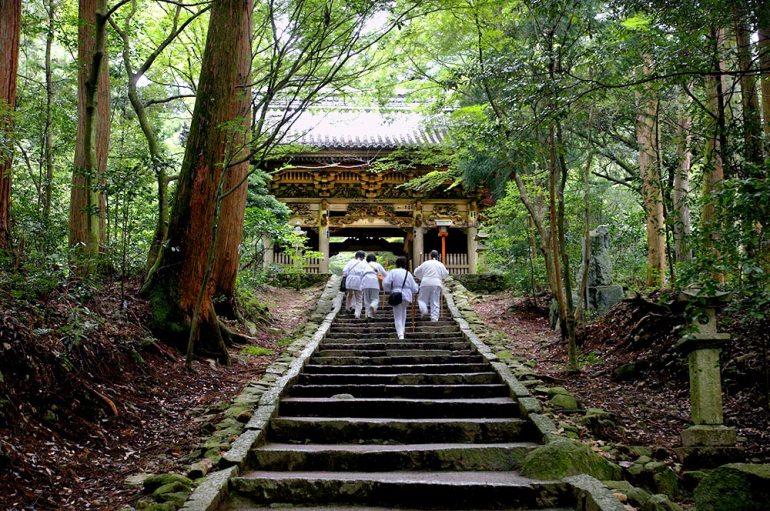 Hiking in Shikoku Japan