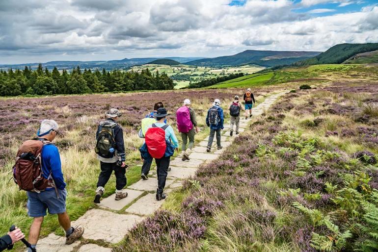 hiking through purple heather in England