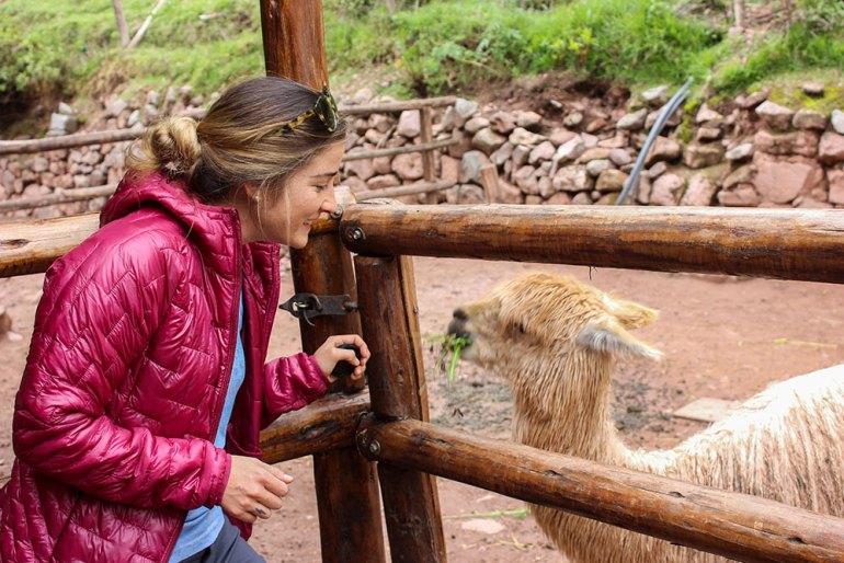 girl and llama in peru